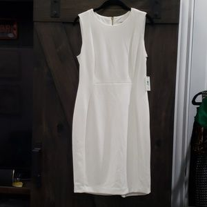 NWT Cream Sheath Dress